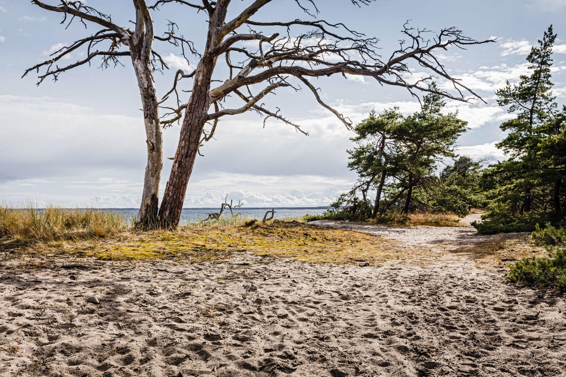 Martin Maier Photography (BFF-Professional) Landschaften #02